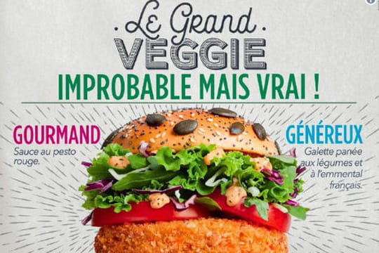 McDo: un burger végétarien et gourmand débarque en France