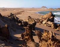Merveilles d'Afrique : Le désert du Namib