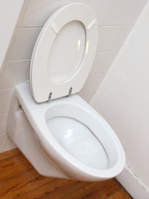 baisser le battant de la cuvette des toilettes. Black Bedroom Furniture Sets. Home Design Ideas
