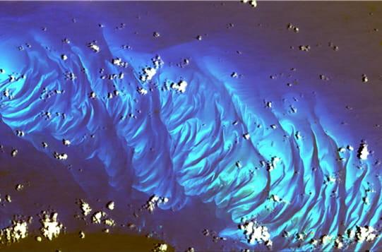 Fond marin des Bahamas