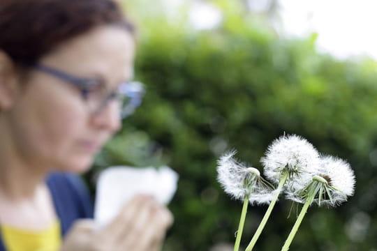Allergie au pollen (rhume des foins): la carte des graminées