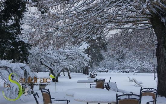 La Sauldraie  - Le parc de L'hotel restaurant La Sauldraie à Salbris sous la neige -