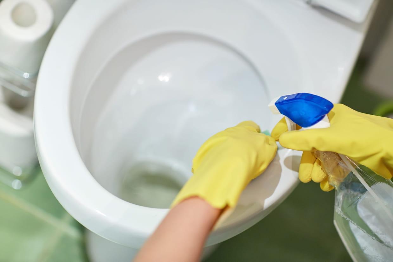 Peinture Pour Les Toilettes comment blanchir le fond de la cuvette des wc : nos astuces