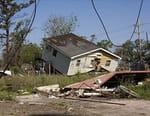 Un siècle de catastrophes