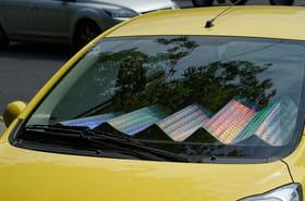 Pare-soleil de voiture: comment le choisir? Conseils, prix et modèles