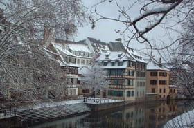 Strasbourg: comment consulter les estimations des municipales 2014?