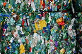 L'Assemblée vote le projet de loi antigaspi, après l'imbroglio sur la consigne plastique