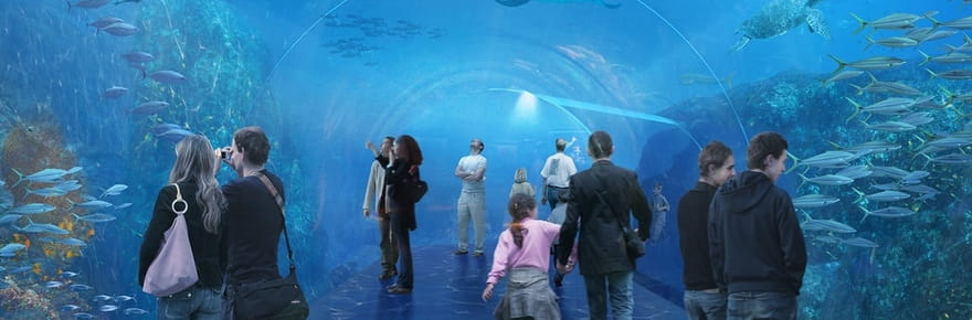 Nausicaá dévoile le plus grand aquarium d'Europe
