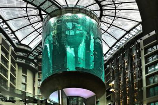 Un ascenseur au coeur du plus grand aquarium du monde