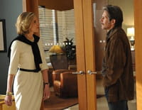 The Good Wife : En leur âme et conscience