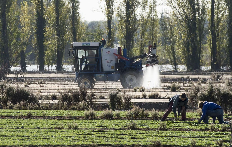 Loire-Atlantique : dans le top 10 des départements consommateurs de pesticides