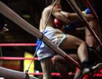 Kick-boxing - Monte-Carlo Fighting Trophy 2018