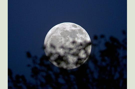 Pleine Lune des fleurs