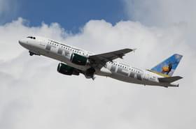 Frontier Airlines: un avion évacué à cause de l'écureuil d'une passagère