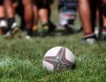 Rugby : Premiership - Wasps / Harlequins