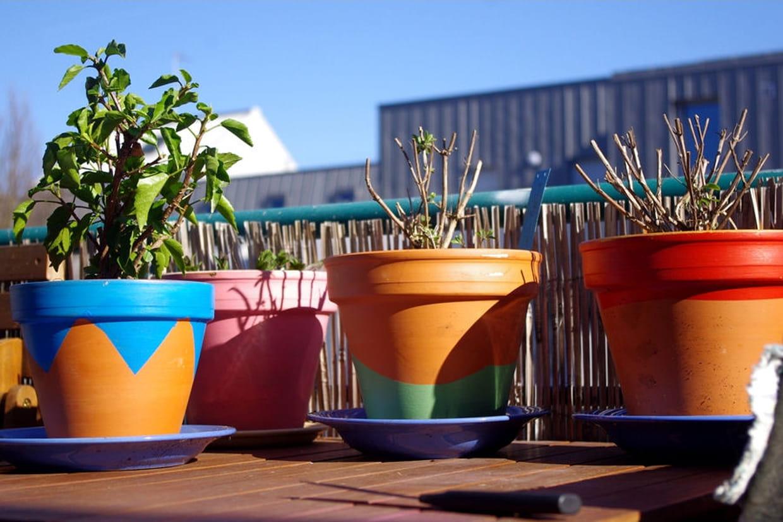 Peinture Couleur Terre Cuite peindre vos pots en terre cuite