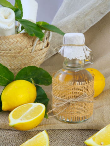 Recette base de citron et de vinaigre pour chasser les - Dosage vinaigre blanc contre pucerons ...