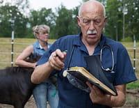L'incroyable Dr Pol : Des taureaux en colère