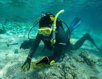 Nouvelle-Calédonie, les pépites du lagon