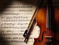 Fauteuils d'orchestre : Le concert