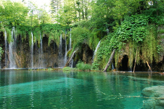 Un véritable labyrinthe naturel