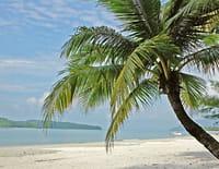 Les îles de Guadeloupe à la trace : J Brother