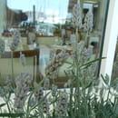 Sépia  - sépia, détente provençale -   © pana