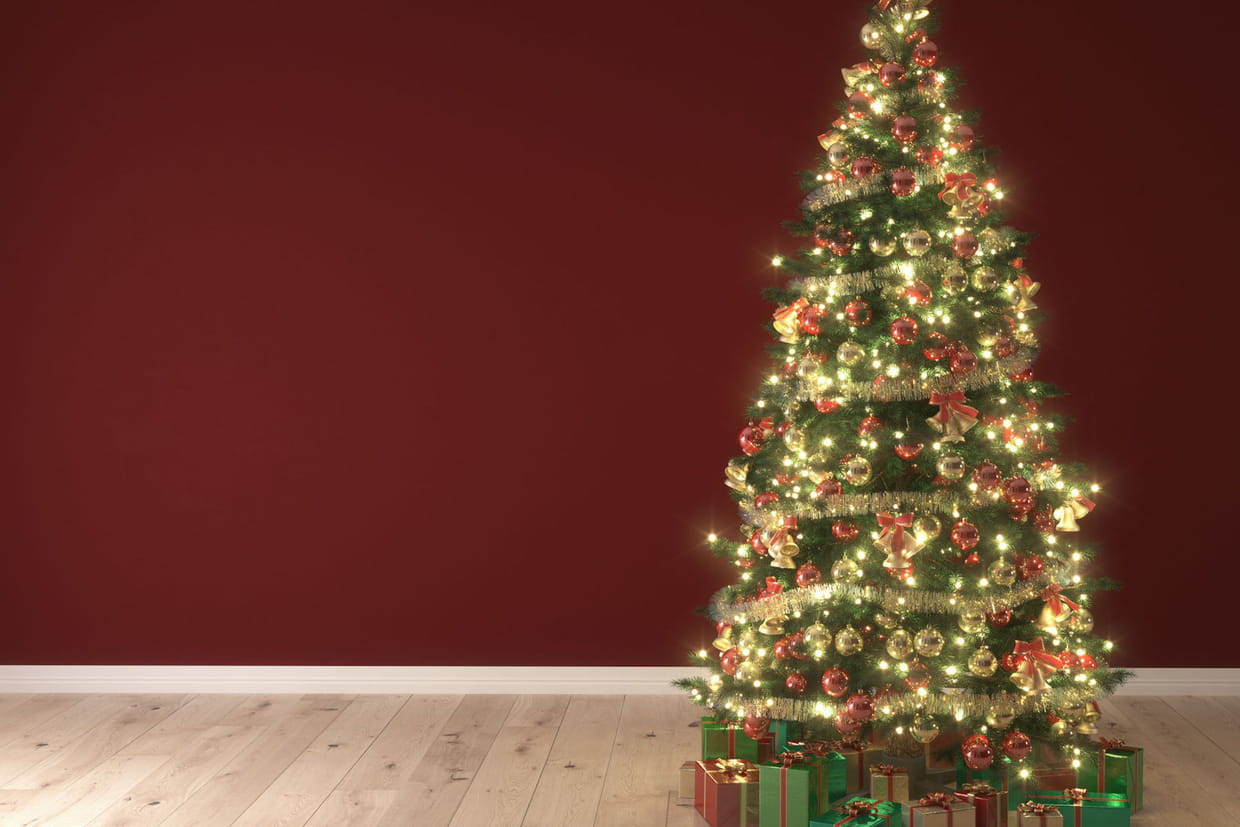 Sapin De Noël Naturel Ou Artificiel Comment Le Choisir