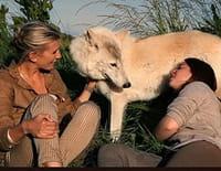 Hélène et les animaux : Ces animaux tout droit sortis du Moyen Age