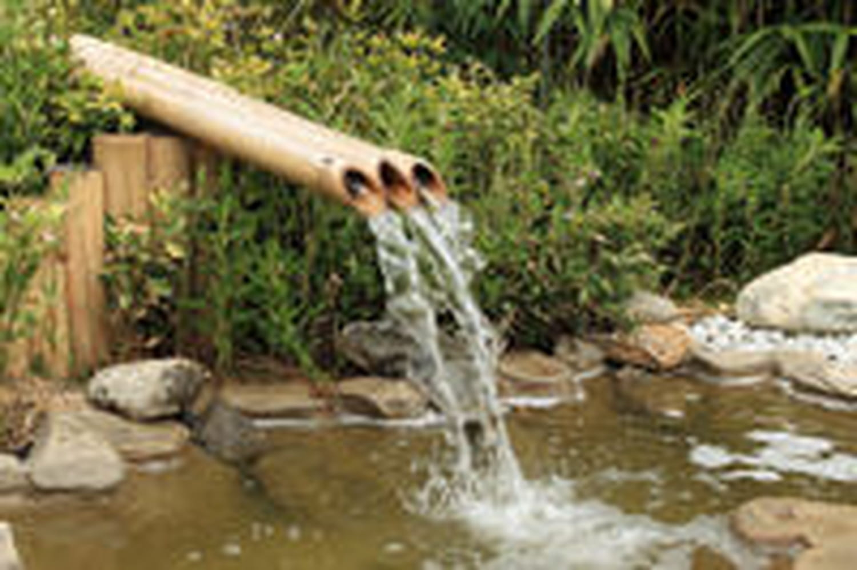 Construire un jardin aquatique