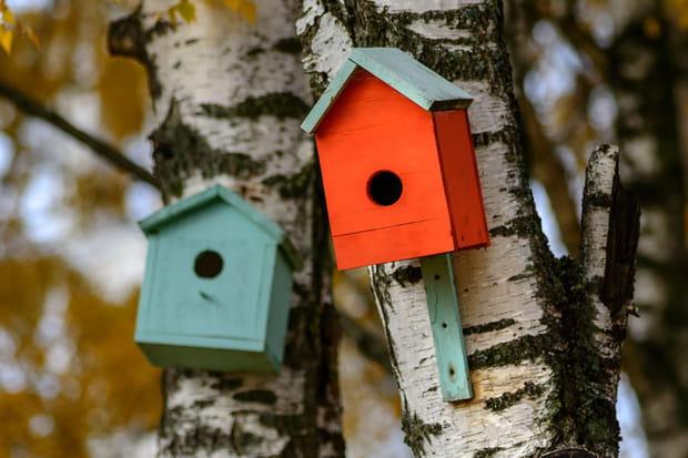 fabriquer un nichoir oiseaux. Black Bedroom Furniture Sets. Home Design Ideas