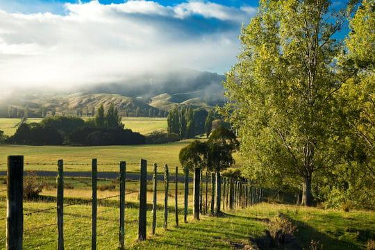 Les plaines de Nouvelle-Zélande