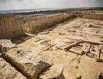 Le mystère Cléopâtre : la dernière reine d'Egypte