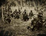 Les guerres de la jungle