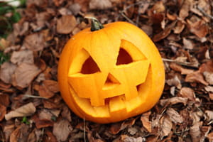 Citrouille D Halloween Nos Astuces Pour La Creuser Et La