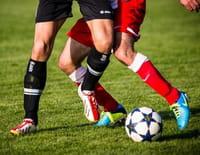 Football : Eliminatoires de la Coupe du monde - Pays-Bas / Gibraltar