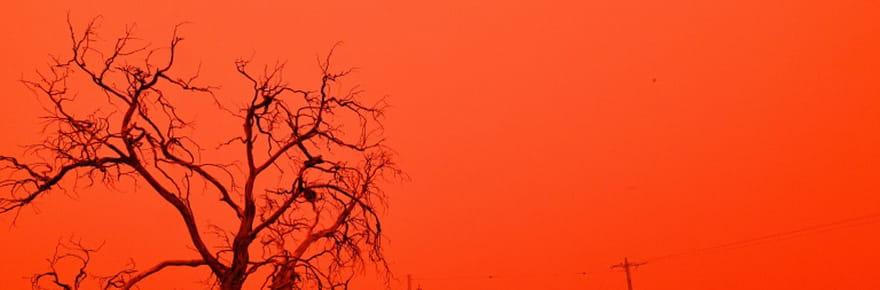 Climat: en 2020, des catastrophes toujours plus coûteuses, selon une ONG