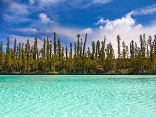 Dans les lagons de Nouvelle-Calédonie