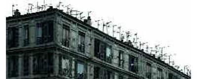 6 - 'des centaines d'antennes sont posées sur les toits. mes images (arbres,