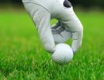 Golf : Open de Chiba - Open de Chiba