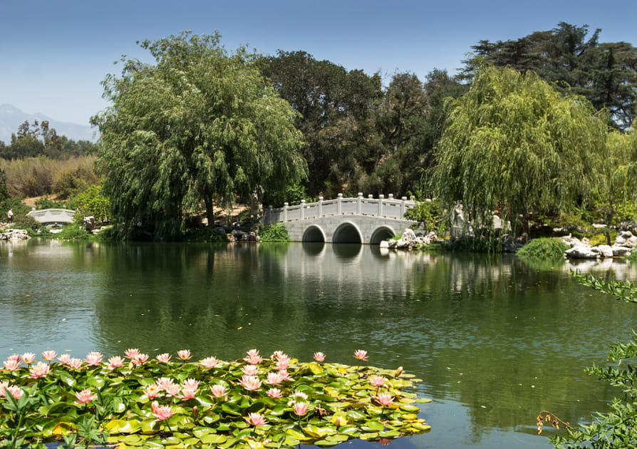 Le jardin de la villa Huntington en Californie