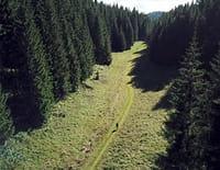 Les plus beaux treks : La grande traversée du Jura