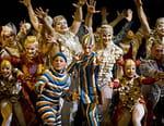 Cirque du Soleil : Amaluna