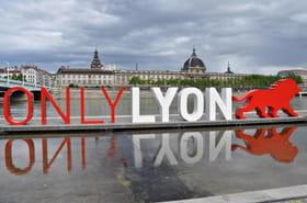 Résultat du FN à Lyon : Christophe Boudot obtient 13,78% #mun69000