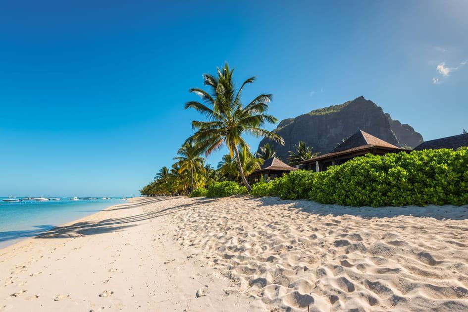 L'île Maurice, sable blanc et cocotiers