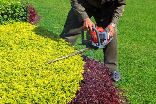 Dans quelle rubrique déclarer les travaux de jardinage?