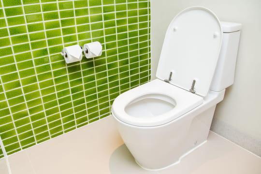 Réparer un WC qui fuit