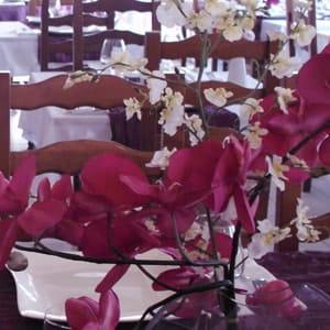 Le Petit Mousse  - restaurant le petit mousse -   © lepetitmousse