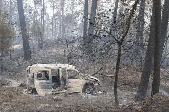 Incendie au Portugal: photos et vidéos après le passage des flammes