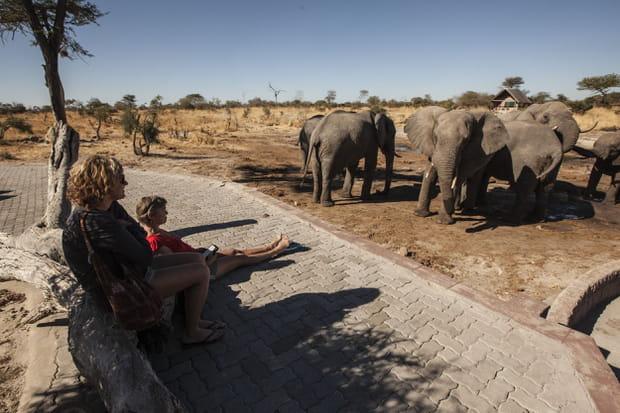 Le parc national de Mana Pools au Zimbabwe